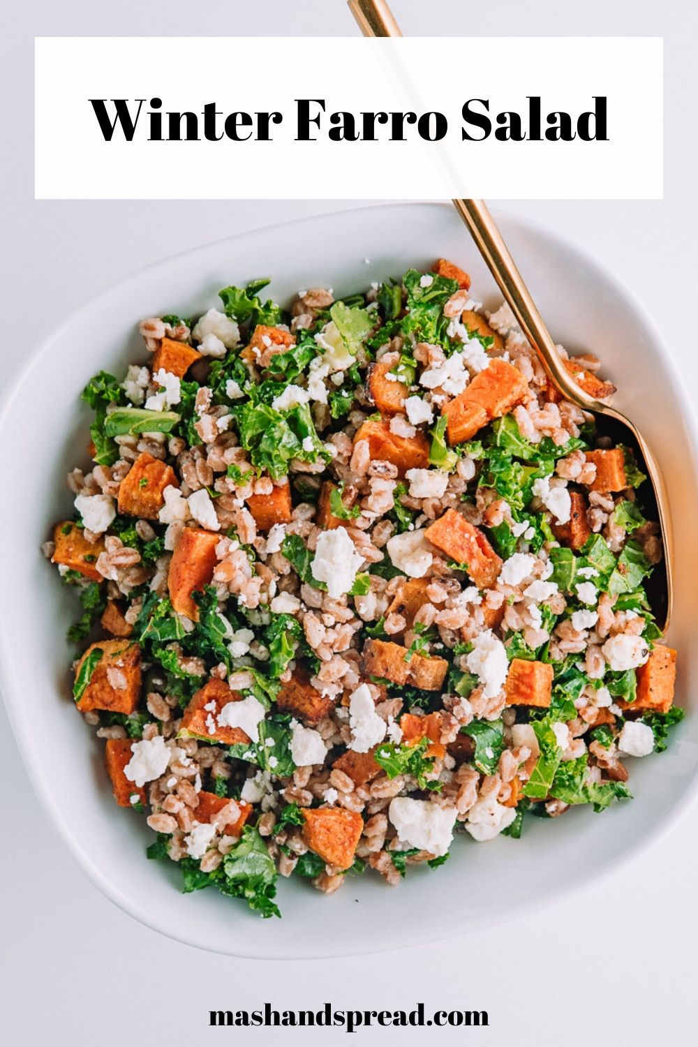 What's in my bowl? A filling, healthy seasonal cozy meal- Winter Faro Salad  made with Nature's Green's Kale. Filled with protein, fiber, and other vitamins and mineral. Get the recipe here! #highfiber #meatlessmeals #wintermeals #recipe #kale #healthyrecipes